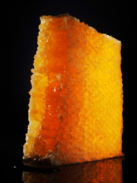 Armin Zogbaum Luxurious Sweets Honeycomb