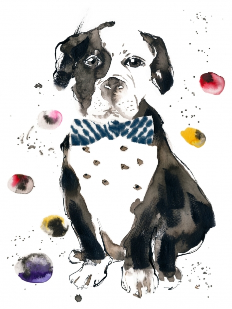 Lily Qian Illustrator NYC Lifestyle Dog drawing