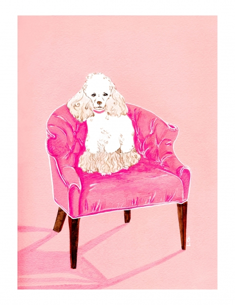 Lily Qian Illustrator NYC dog drawing color drawing